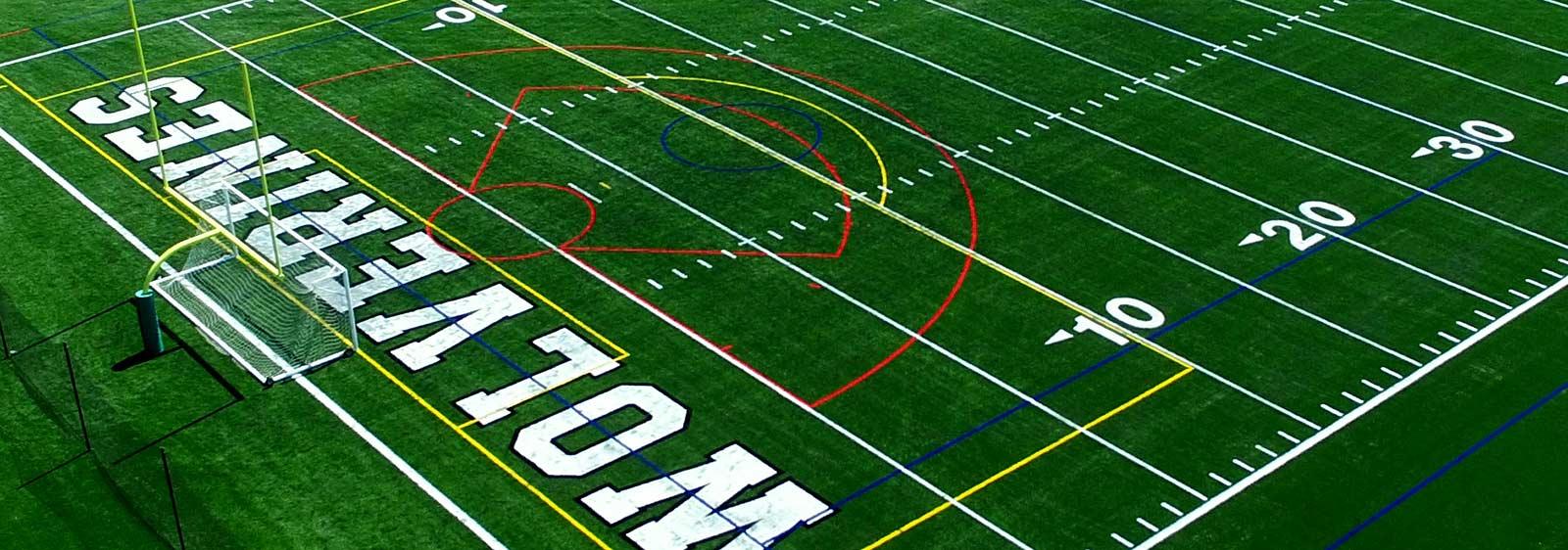 Wolverines Stadium Turf